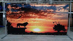 Lion king 02 (k)